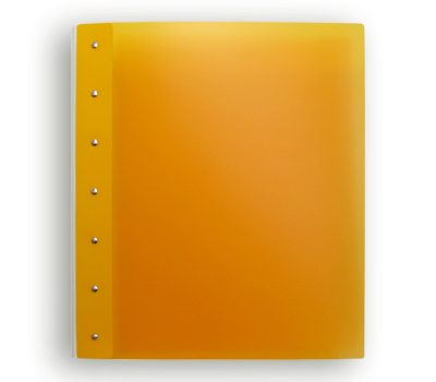 "Presence Light 3-Ring Binder by Case Envy » 2"" (letter) Portrait » Orange Front and Back with White Hinge - Click Image to Close"