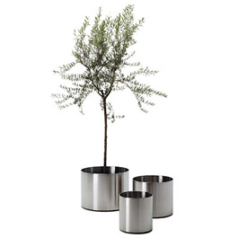 Nox Flora Planter on Castors by Rexite » Brushed Stainless Steel