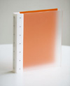 "Presence 3-Ring Binder by Case Envy » 1"" (letter) Portrait » Frosted Clear Front and Orange Back with White Hinge"